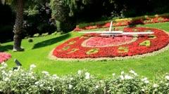 Clock in flowers Stock Footage