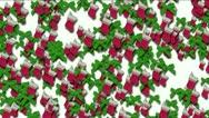 Stock Video Footage of chrismas socks & rotate snowflake background.