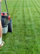 grass mowing - stock photo