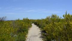 Cape naturaliste scenic path Stock Footage