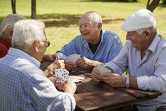 active seniors, group of old friends playing cards at park - stock photo