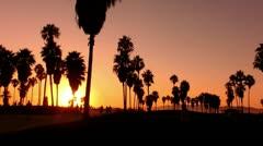 Sunset Beach 12 Silhouette Venice California Stock Footage