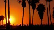 Sunset Beach 16 Silhouette Venice California Stock Footage
