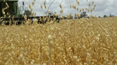 Harvesting an oats crop on farm in Western Australia Stock Footage