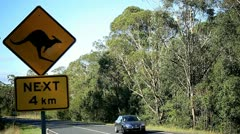 Kangaroo road sign - stock footage