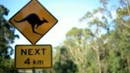 Kangaroo Crossing Road Sign Stock Footage