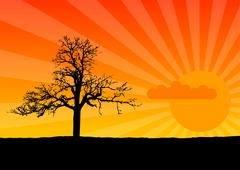 sunset - stock illustration