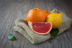 citrus fuits - stock photo