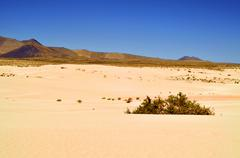 Stock Photo of natural park of dunes of corralejo in fuerteventura, spain