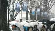 TOKYO - Crowd under Snow walking in Street 2 Stock Footage