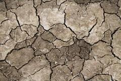 arid cracked earth - stock photo