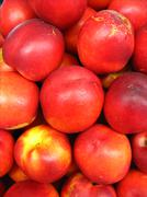 a lot of red nectarines - stock photo