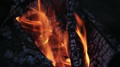 Campfire Loop #1 - stock footage
