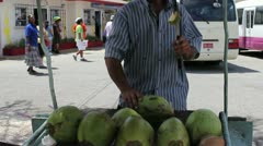 Caribbean Fruit Vender Stock Footage
