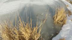 Dead Duck Weed over a Frozen lake Aerial lift Stock Footage