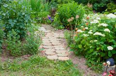 Stock Photo of path in a garden