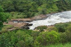 Whitewater at murchison falls in africa Stock Photos