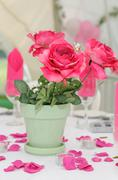 Pink roses decorate table. Stock Photos