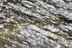 rocky background - stock photo