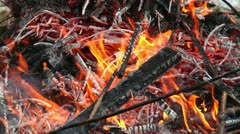 burning branches on a pyre - stock footage