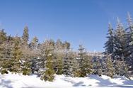Fresh snow in the mountains Stock Photos