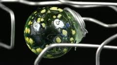 Deep green sphere Stock Footage