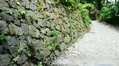 Man made rock wall pathway lead to forest Stock Footage