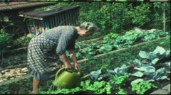 Vintage 8 mm film: Grandma watering garden, Germany, 1970s Stock Footage