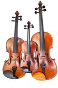 family of violins - stock photo