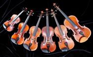 Stock Photo of family of different sized violins on black