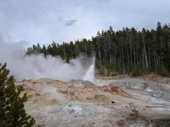 Stock Photo of geyser in the yellowstone national park