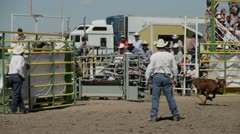 Calf Roping Stock Footage