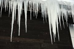 The big white icicles during cold winter Stock Photos