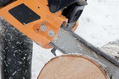 Sawing logs birch Stock Photos