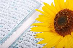 Holy islam book and rose Stock Photos