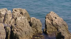 Rocks stabbing up out of sea water - stock footage