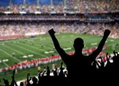 Stock Photo of football fan celebration