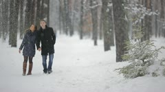 The young lovers walk and rest in the winter forest, SNOWFALL weather Stock Footage