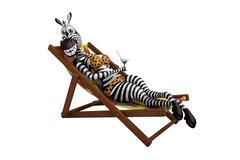 Zebra lies on a deck-chair Stock Illustration