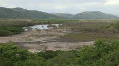 Transkei wilderness Stock Footage