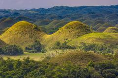 Panoramic view of the chocolate hills Stock Photos