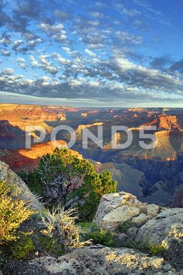 Stock photo of view of famous grand canyon
