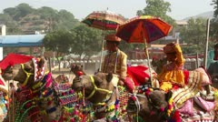 Competition to decorate camels at fair in Pushkar India Stock Footage