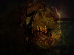 Skull in a crypt Stock Illustration