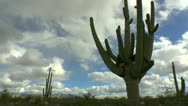 Arizona Desert Light Time Lapse Stock Footage