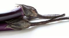 Eggplant. - stock footage