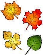 Fall leaves Stock Illustration