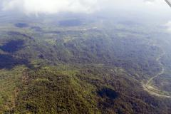 Former tropical rainforest in pastaza province, ecuador cleared for cattle pa Stock Photos