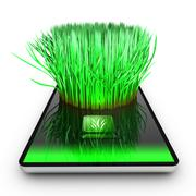 a smartphone application is growing grass - stock illustration