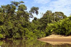 Stock Photo of amazonian river, the rio cononaco in ecuador